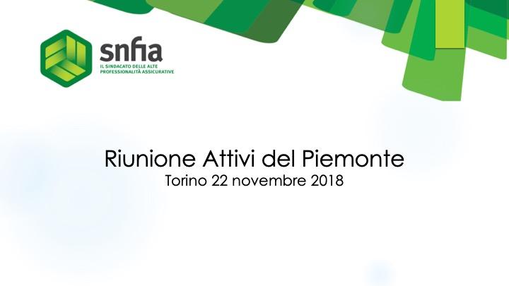 Riunione degli attivi del Piemonte